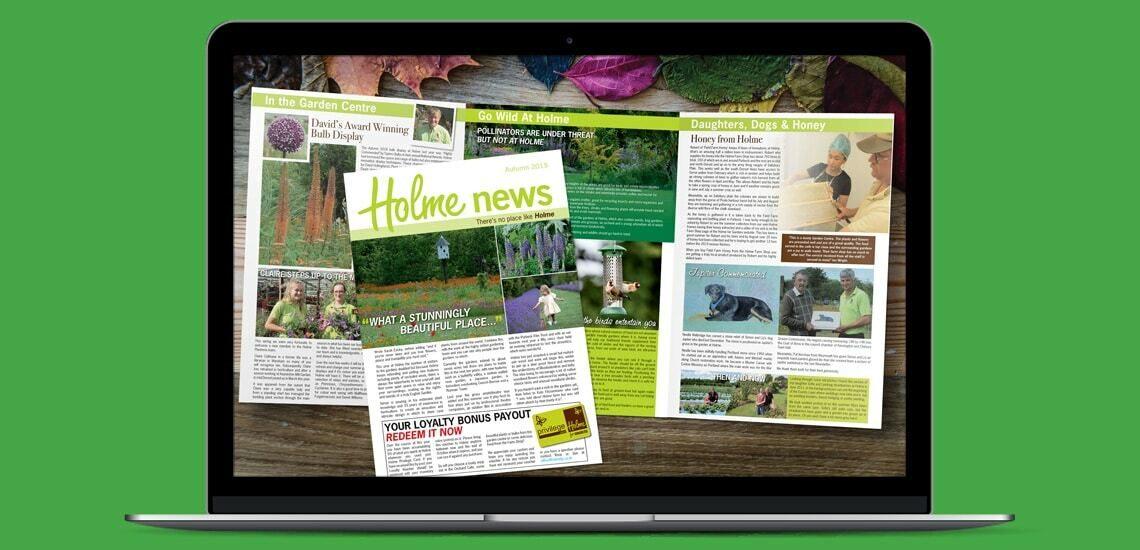 Designosaur Slim Laptop 6pp A4 Newsletter