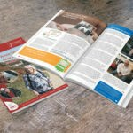 designosaur graphic design portfolio pinnt newsletter