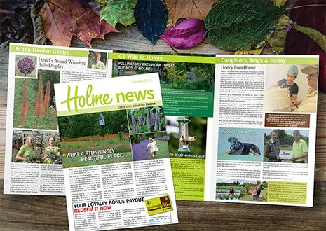 6pp a4 newsletter design and print465px