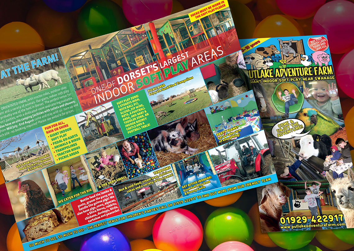 6pp dl roll fold leaflet design and print1140px
